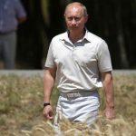 Putin pohnojil pole poblíž Krasnodaru vlastními výkaly. Do dvou dnů zde vyrostla 100 metrová pšenice a 20 kg brambory