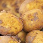 V Rusku po spuštění 5G sítě ožily všechny brambory, které teď terorizují obyvatelstvo
